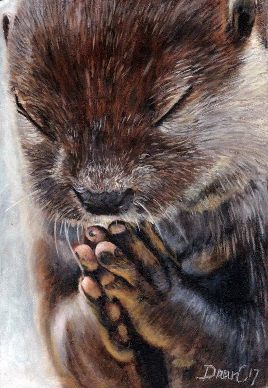 animal love, praying, bidden, liefde, geloof, hoop, belief, hope, otter, to pray, olieverf, oil painting